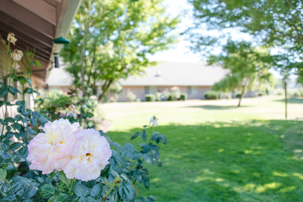Tierra Rose Senior Living Community - Salem, Oregon - Photo by BrightlyandCo.com