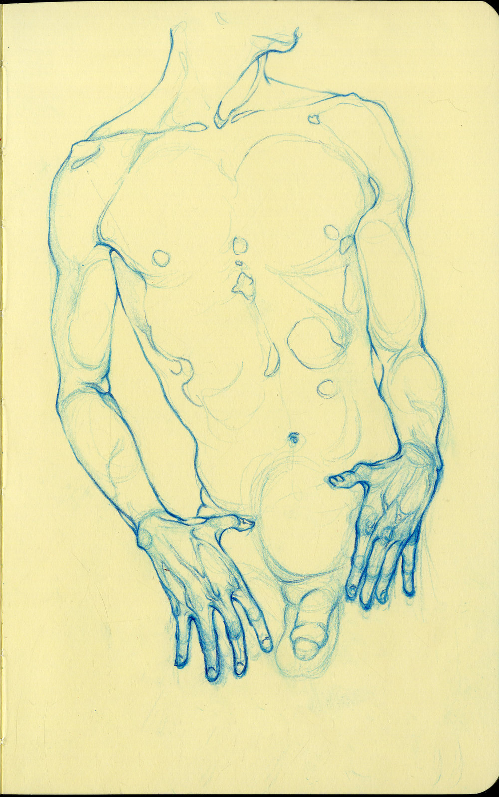 blue figure 1.jpg