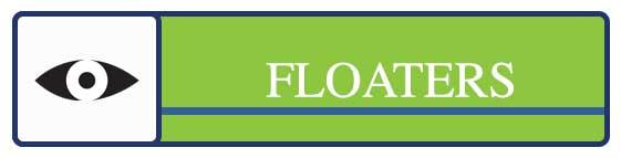 Cochrane-disease-button-FLOATERS.jpg