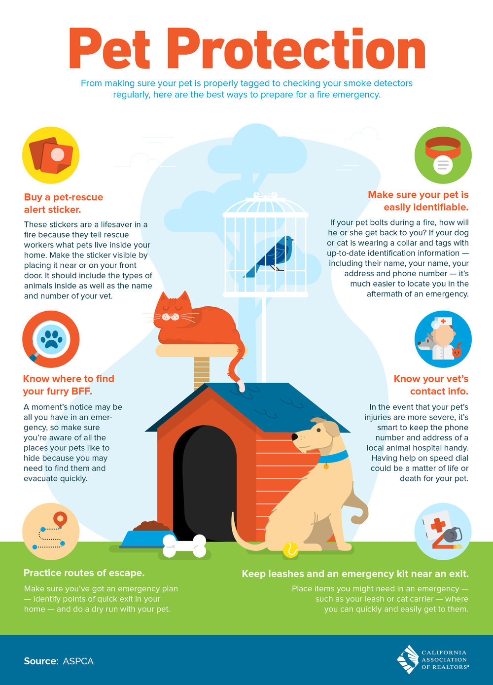 Pet Protection Infograph.jpg