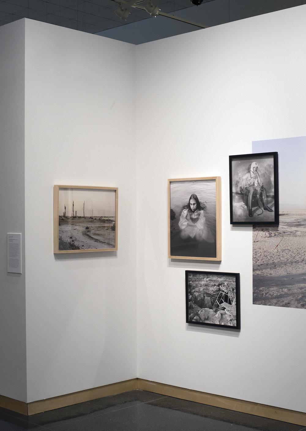 Syracuse University Art Gallery