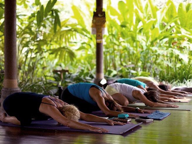 Scott Lyons Holistic Therapy Mind Body Medicine Embodied Flow Yoga Teacher Training Retreat.jpg