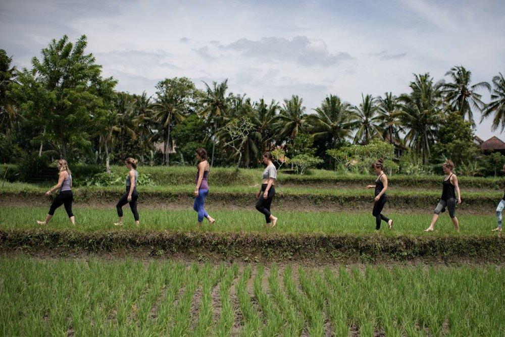 Holistic Doctor Scott Lyons Tara Judelle Embodied Flow Yoga Teacher Training Retreat Bali.jpg