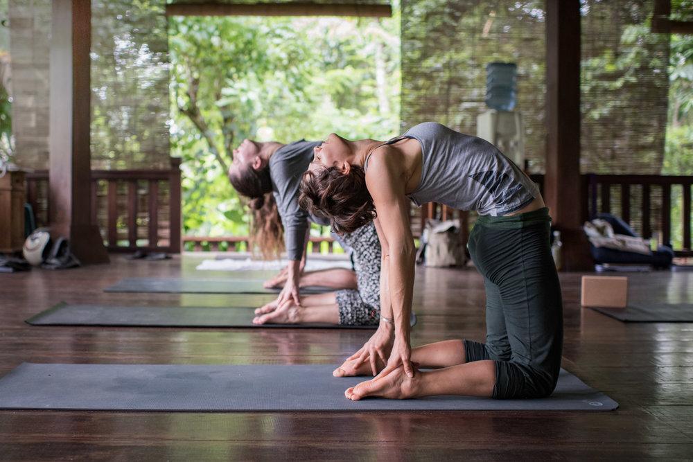 Embodied Flow Yoga Teacher Training 200 HR 500 Hour RYT.jpg