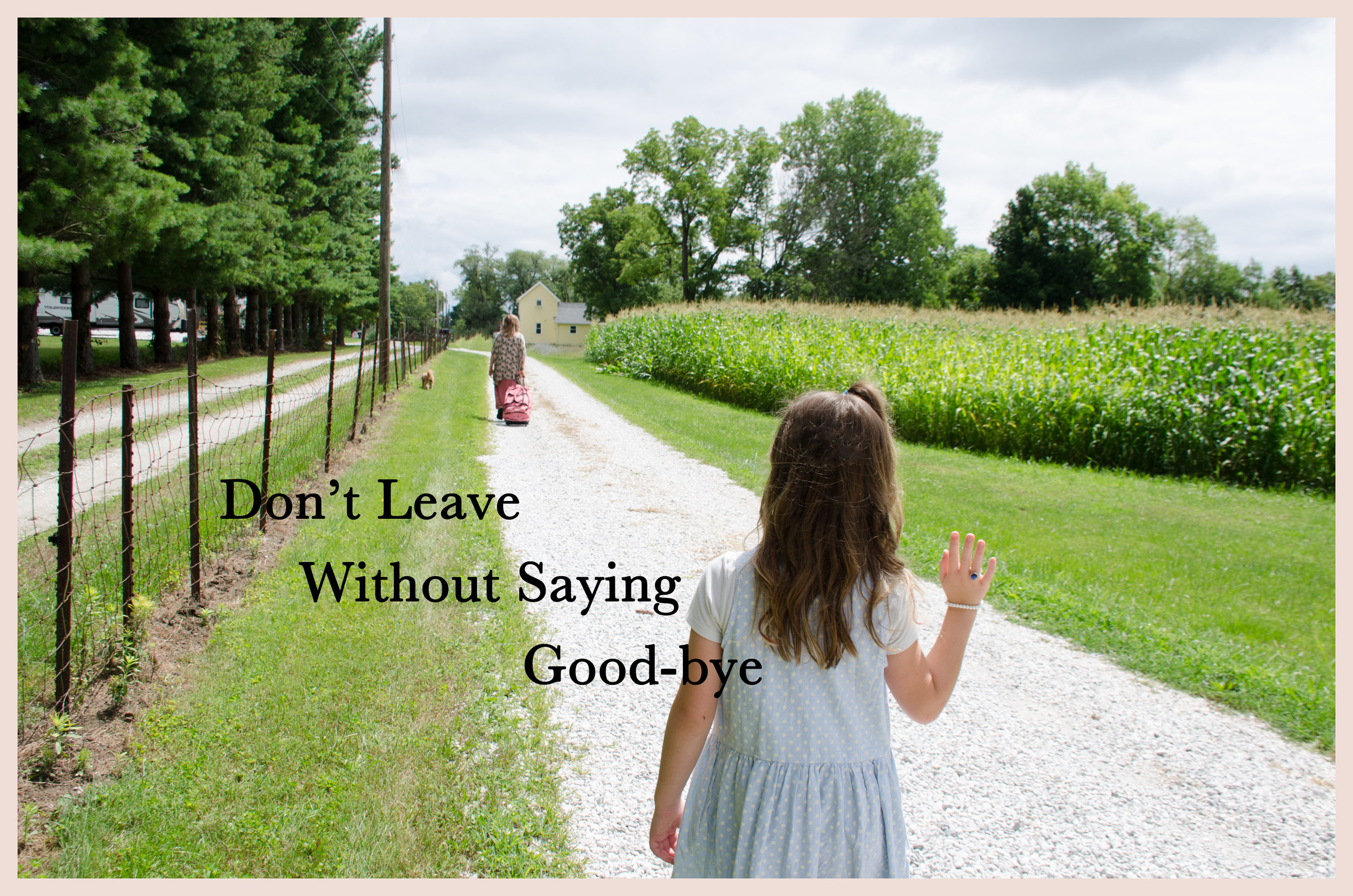 Don't Leave Without Saying Good-Bye — Love Song to My Life