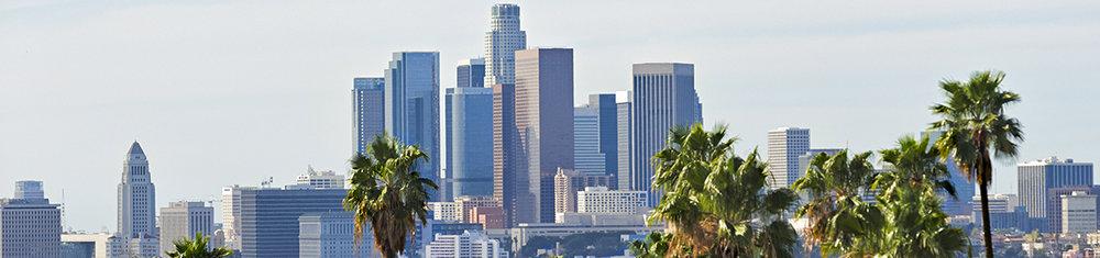 Los Angeles banner x.jpg