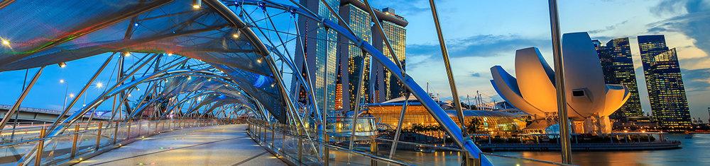 Singapore banner x.jpg