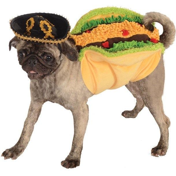 Taco Pug Costume