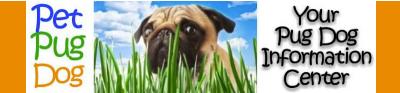 pet pug dog website