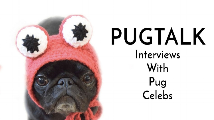 Pug Talk Interviews