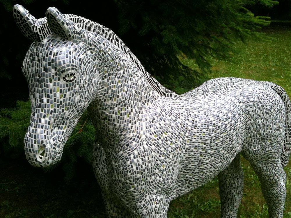 Lumen the colt