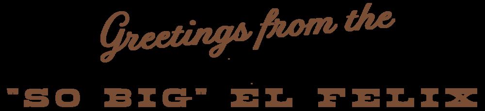 el-felix_landing-page_04.png