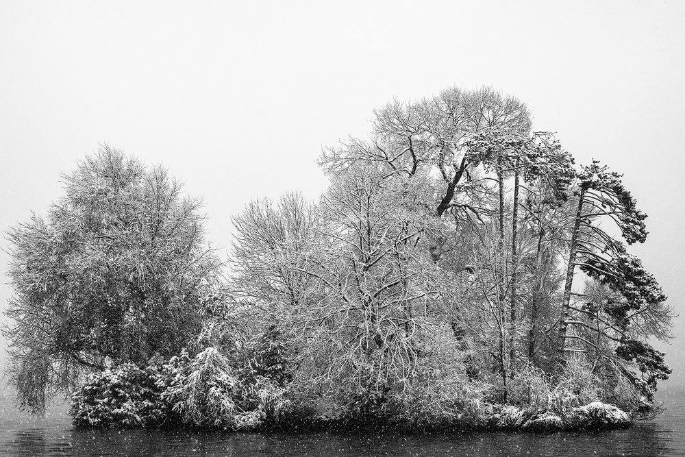 isle-aux-cygnes-Annecy-décembre-2012.jpg