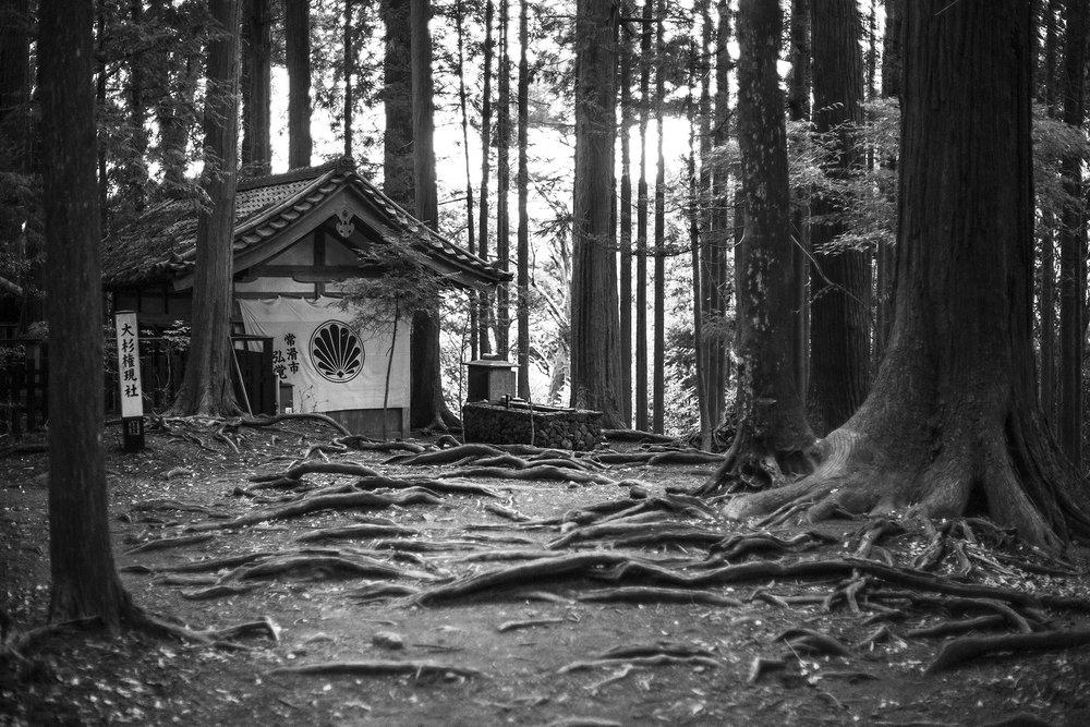 hermitage-Mont-Kurama-Japon-octobre-2016.jpg