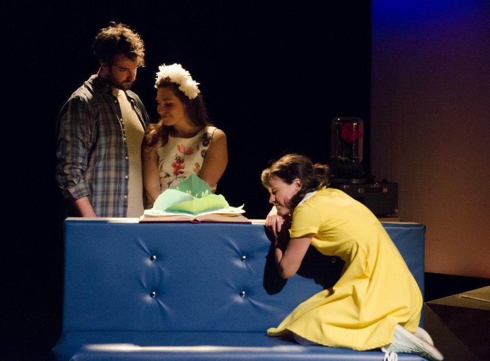 Mon Petit Prince   Théâtre Gros Mécano & Théâtre de la Petite Marée  (11 février 2018)