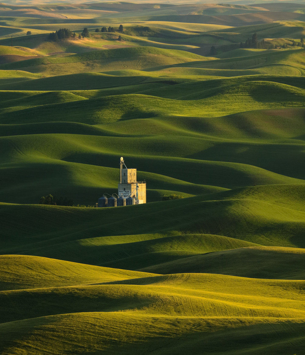 Palouse Gallery