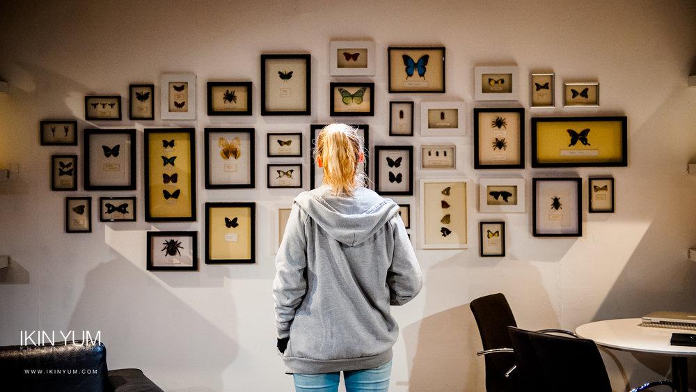 The Wasp - Trafalgar Studios - London