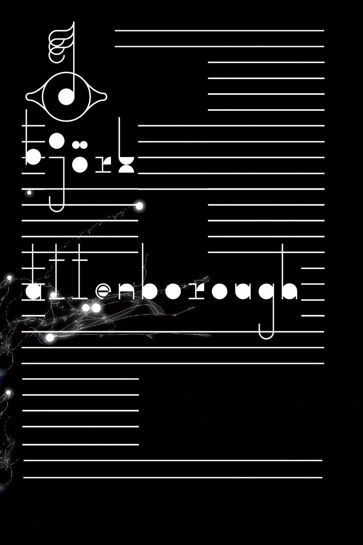 Poster-When Bjök Met .jpg