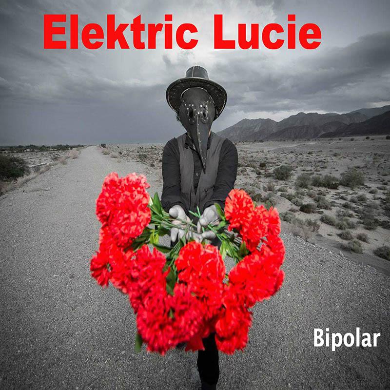 elektricbipolar.jpg