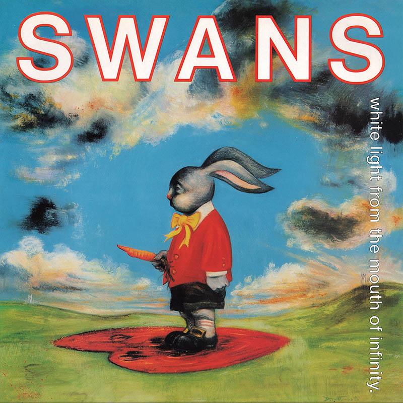 swanswhite.jpg