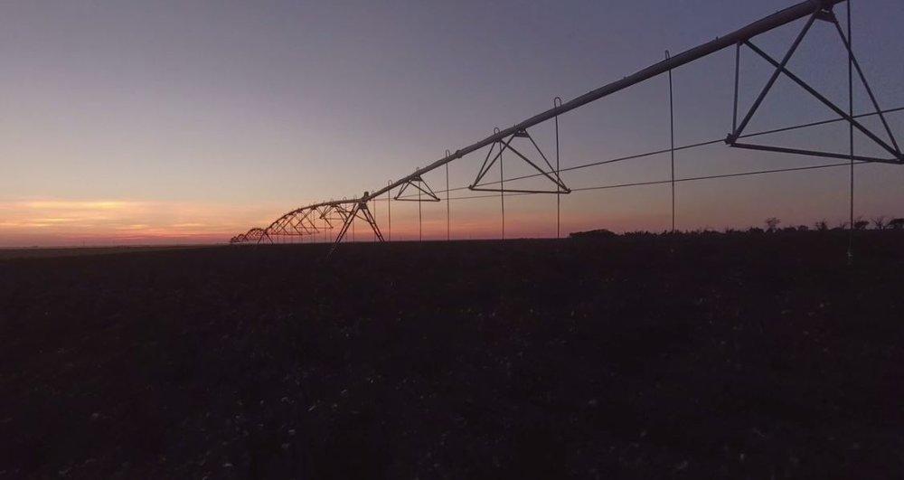 farm austin 2 .JPG