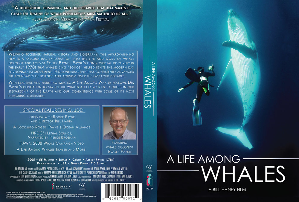 a-life-among-whales_6965040031_o.jpg