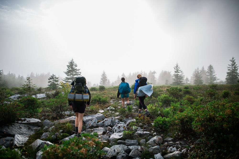 Hiking in Dolly Sods West Virginia, West Virginia adventure photographer, Dolly Sods adventures, rainy day adventures, rainy hike. Walking into the sun during a foggy women's backpacking trip at Dolly Sods, WV