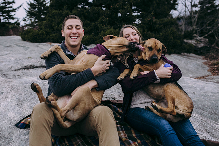 The Blue Ridge Parkway or Skyline Drive is the perfect place for a couples photoshoot with dogs! WE explored this section of the Blue Ridge Parkway right outside Asheville, NC, and almost had the space to ourselves!
