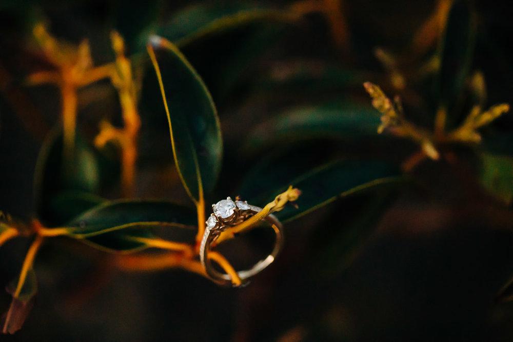 Shenandoah-National-Park-Engagement-Photography-77.jpg