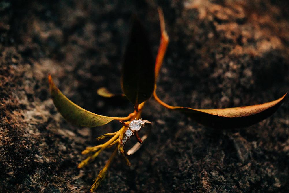 Shenandoah-National-Park-Engagement-Photography-78.jpg