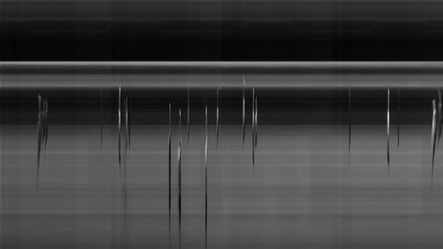 barcode-1_o.jpg