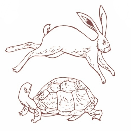 Hare and the Turtle