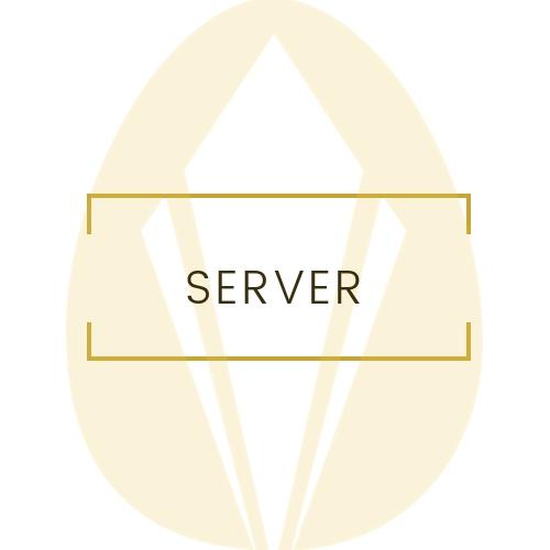 Server Icon.jpg