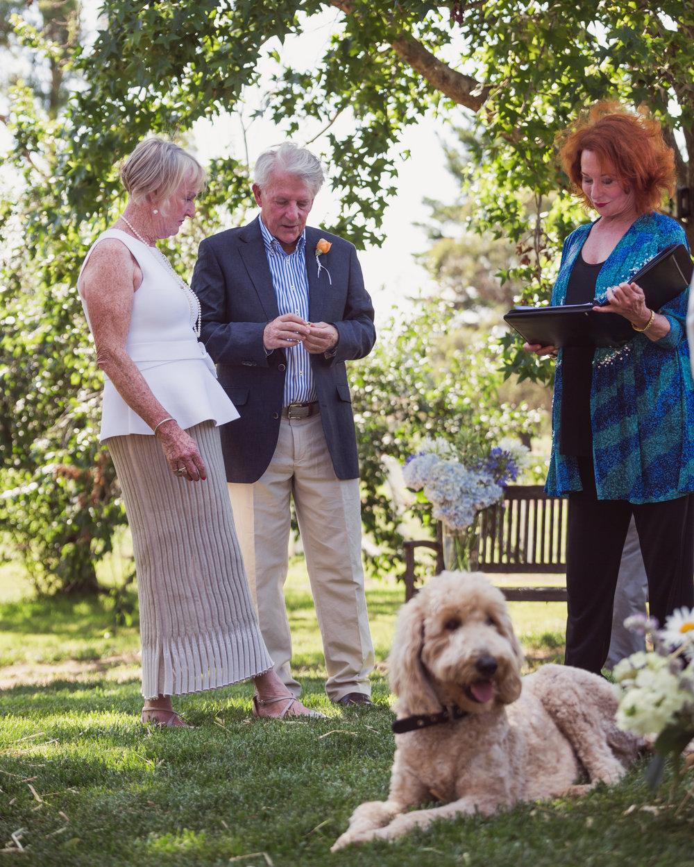 mums wedding (44 of 195).jpg