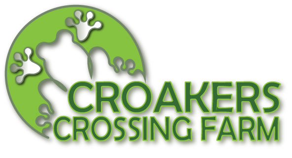 frog logo7.jpg