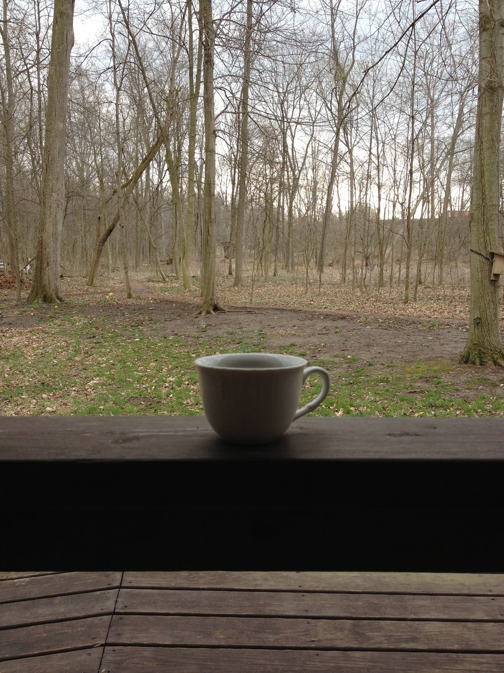 tea in the woods.jpg