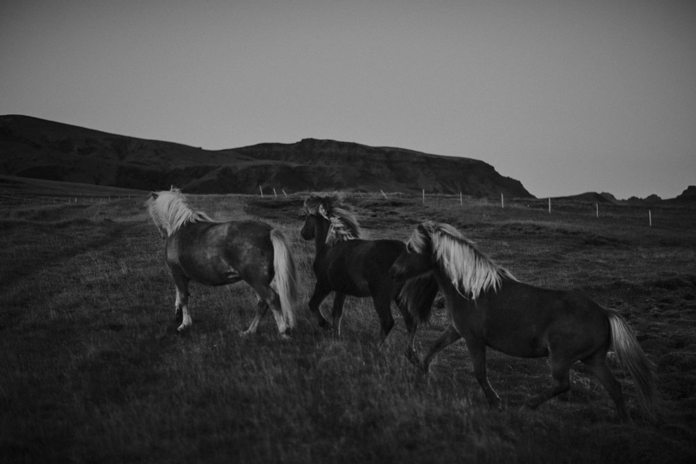 Romantic Iceland Elopement _ rafal bojar 081.jpg