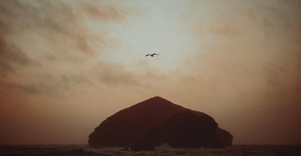 Elopement in Azores _ rafal bojar 098.jpg