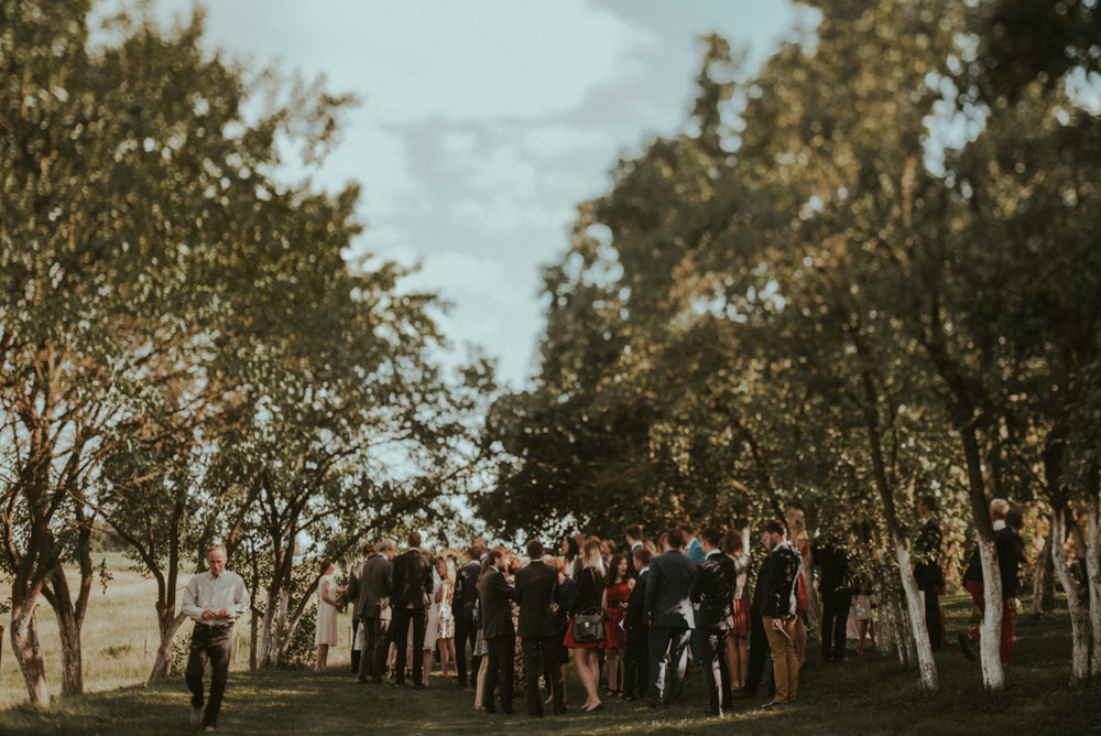 Iceland Ranch Wedding _ rafal bojar 081.JPG