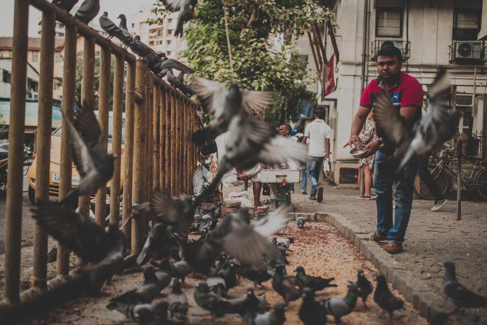 India Street Photography _ rafal bojar 134.JPG