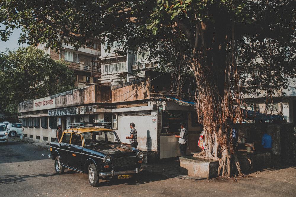 India Street Photography _ rafal bojar 170.JPG