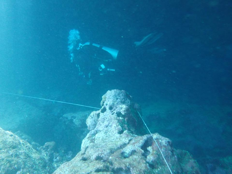 Open water divers are a regular feature in the caves at Sharks Cove.