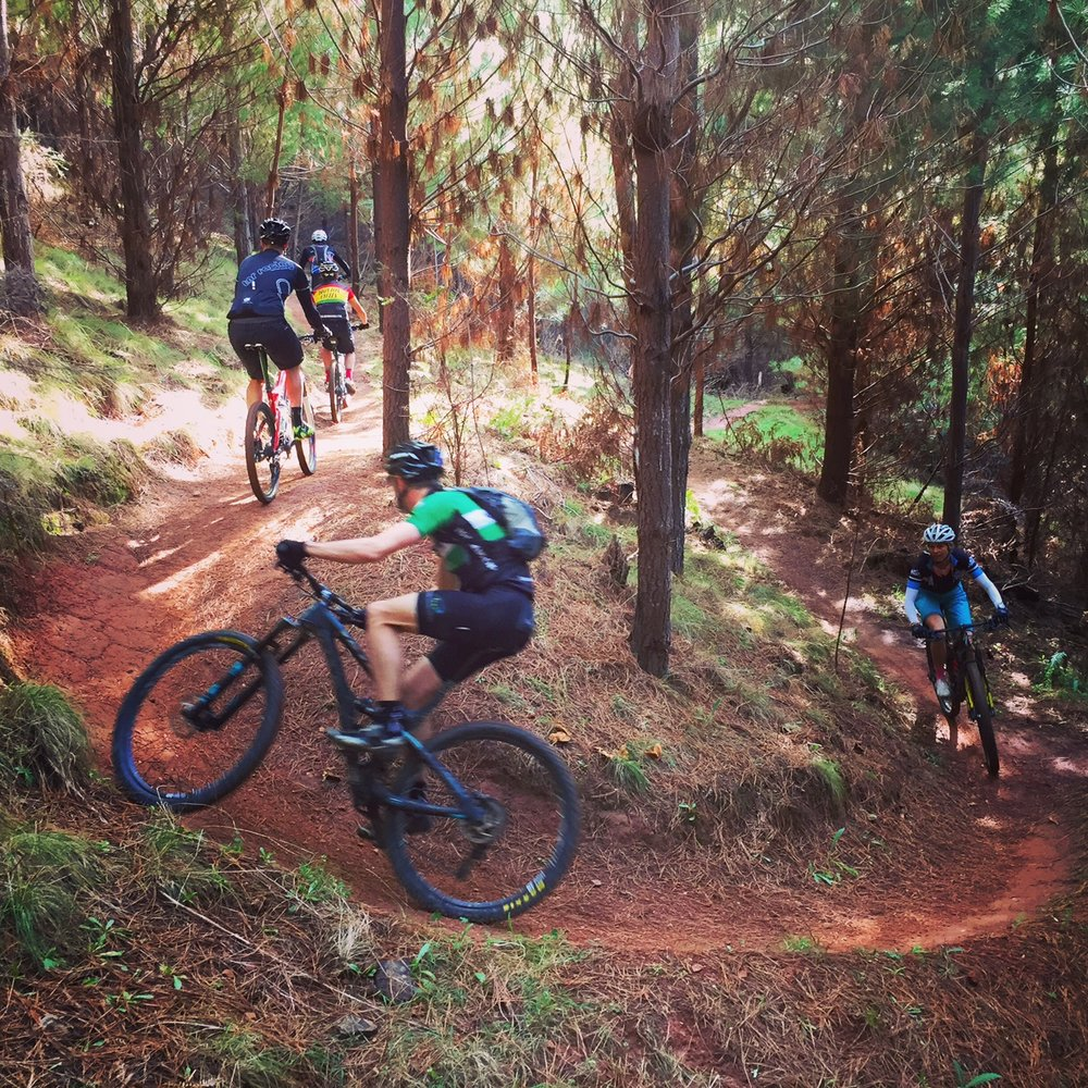 Mountain biking in Bright