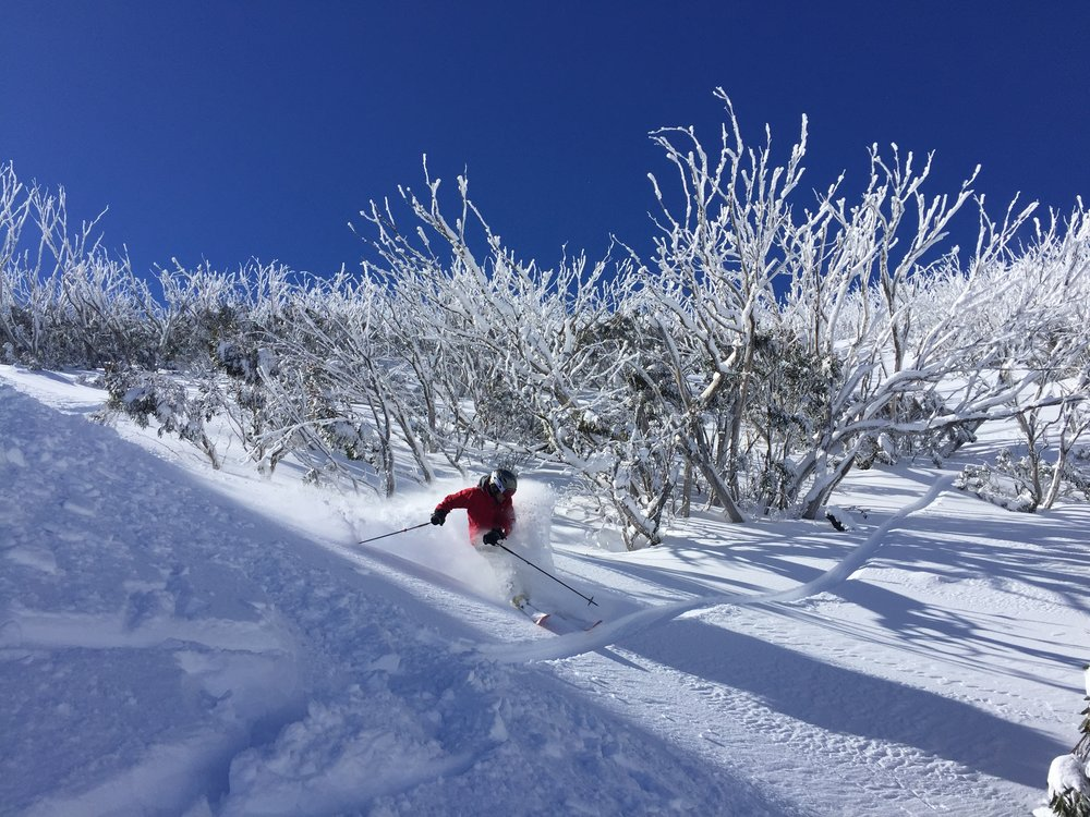 Powder day- Mt Hotham