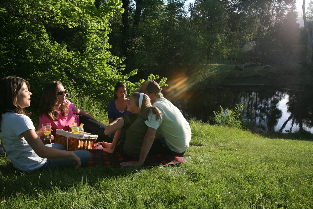 Picnics along the Ovens River