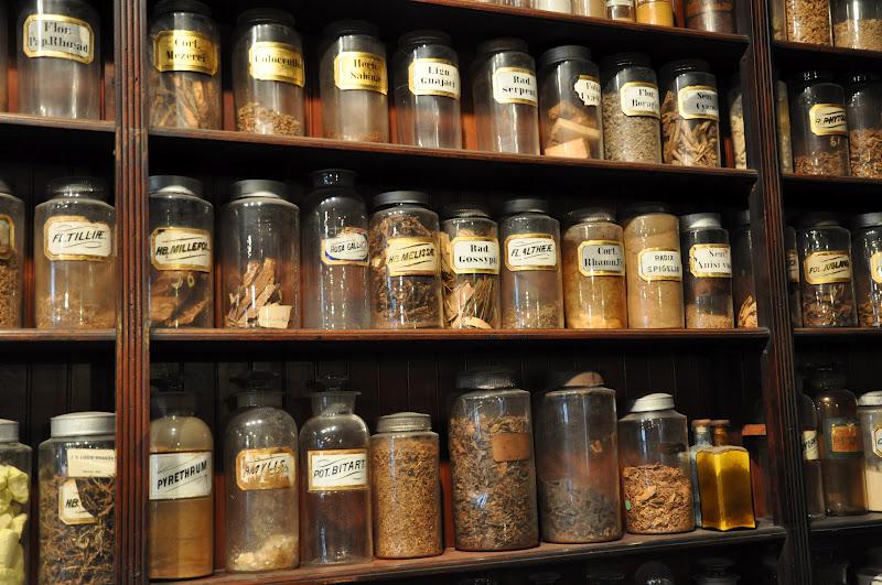 Pharmacy Museum Shelf bottles color.jpg