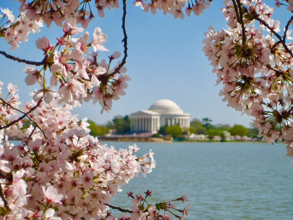 20+ Things to do During Your First Month in D.C.  - New to D.C.? The summer may be slipping away, but September and October are packed with events that will make you love the fall just as much. Let the fall festivities begin.