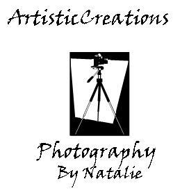 ArtisticCreations by Natalie