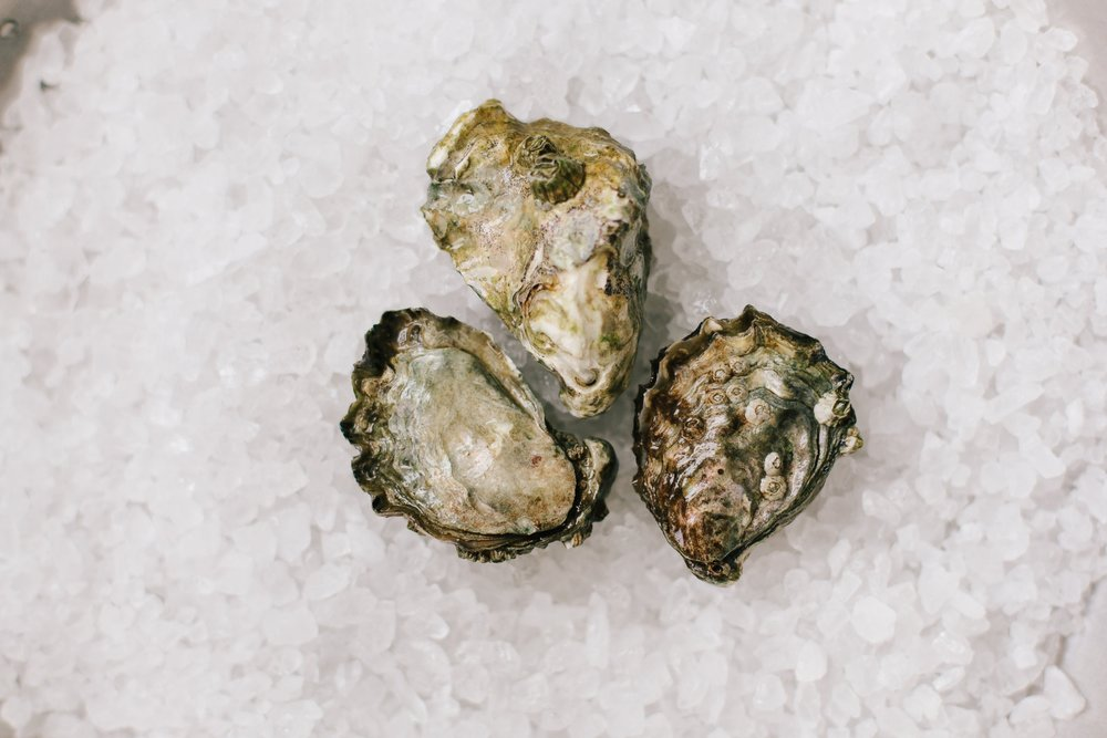Kumamoto - Origin: WashingtonFlavor Profile: Mild brininess, sweet flavor and a melon finish. Deep-cupped shell with petite meats. A favorite for both new oyster eaters and connoisseurs.