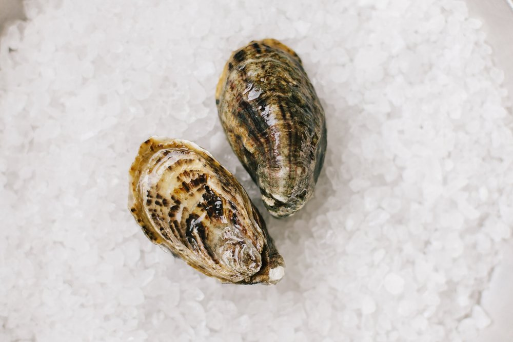 Fat Bastard - Origin: Willapa Bay, WashingtonFlavor Profile: Fat Bastard oysters are a tumbled Shigoku allowed to grow to 2.5-3.25″ (vs a Shigoku's 1.5-2.5″) and about twice the volume but with the same clean taste.
